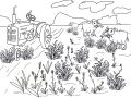 Farm-by-Shirlei-Barnes