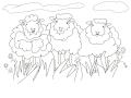 Sheep-by-Shirlei-Barnes
