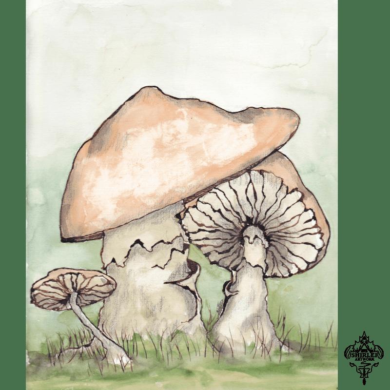 Character Illustration – Mushroom